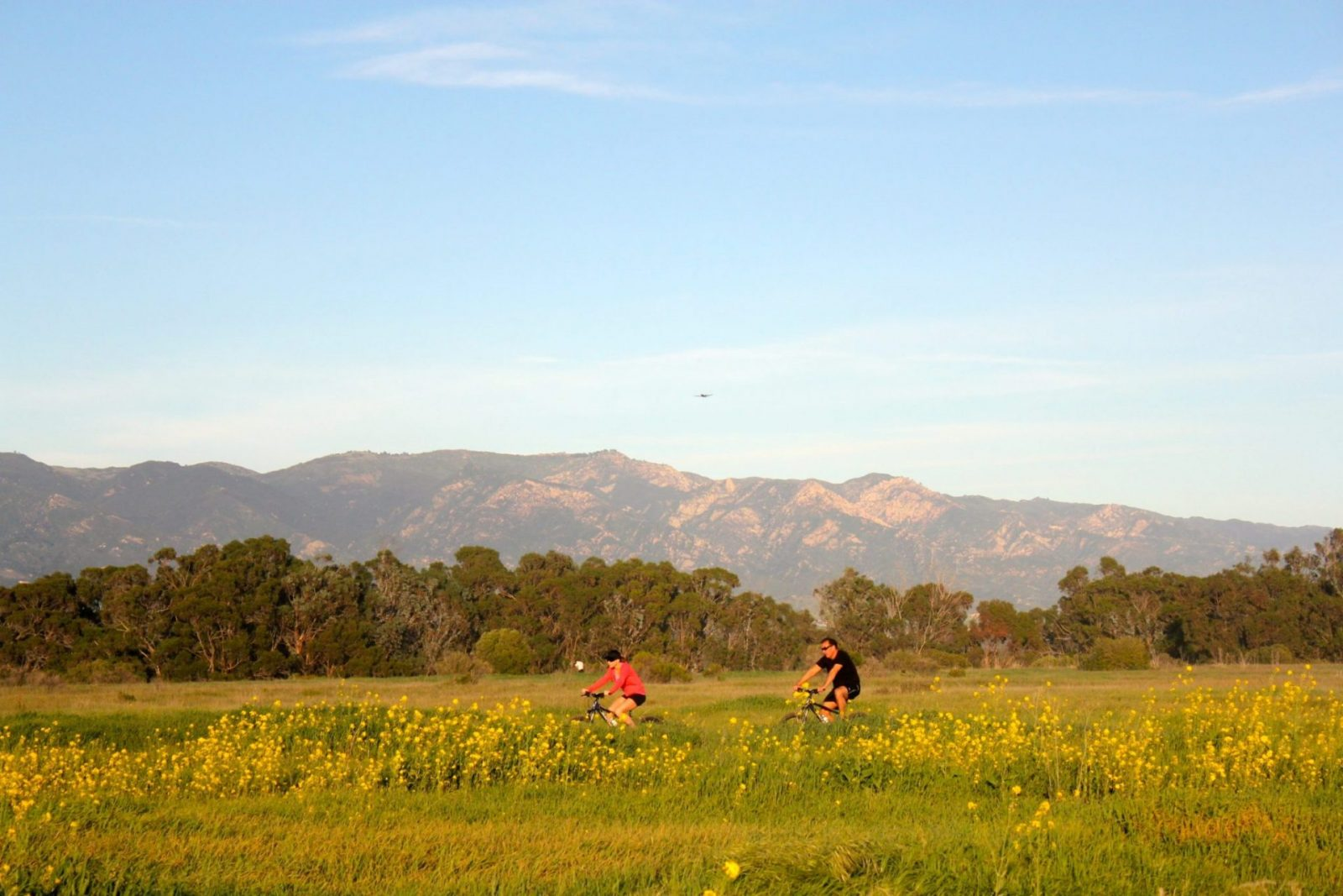 Wildflowers, situated on a vast field, sway in the wind as a male and female cyclist zoom by.