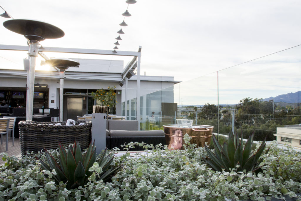 Plants and seating at The Roof Top Bistro & Bar